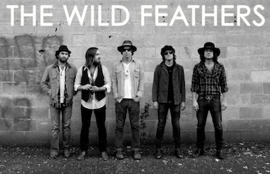 the wild feathers11