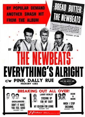 The Newbeats poster